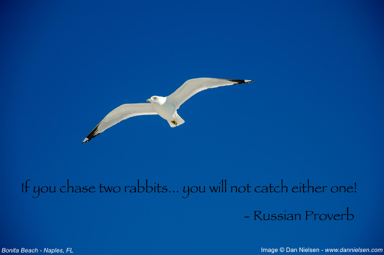 """""""If you chase two rabbits… you will not catch either one!"""" - Russian Proverb"""
