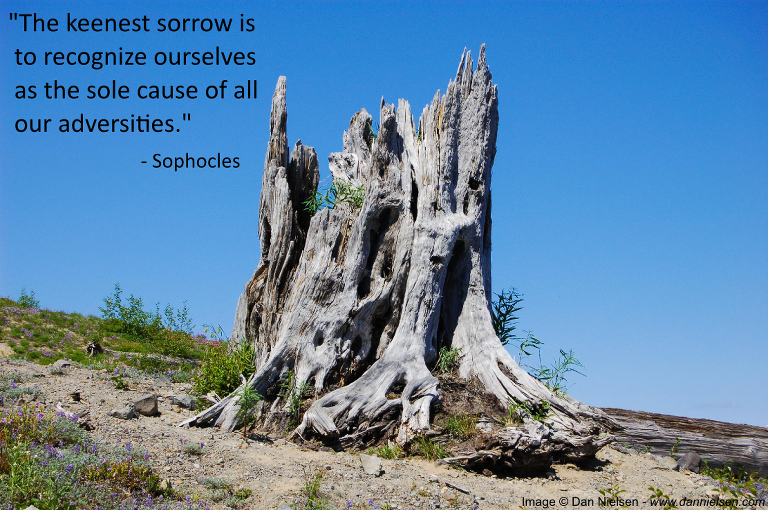 """The keenest sorrow is to recognize ourselves as the sole cause of all our adversities.""  - Sophocles"