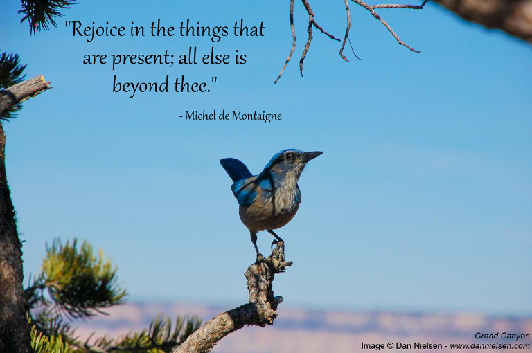 "Rejoice in the things that are present; all else is beyond thee."" - Michel de Montaigne"