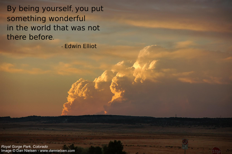 """By being yourself, you put something wonderful in the world that was not there before.""  - Edwin Elliot"